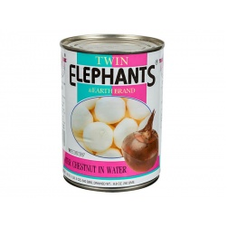 Twin Elephants Water Chestnuts in Water 540g